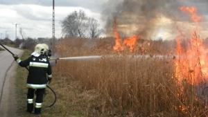 A szabadtéri tüzek voltak túlsúlyban